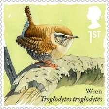 The New Royal Mail Wren Stmap - part of the Songbirds Series